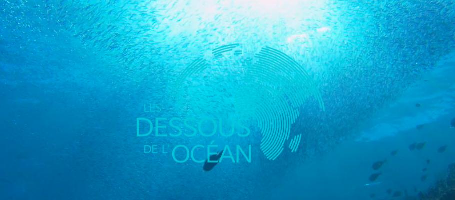 les_dessous_des_oceans